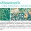Sena Marine Plankton Water Serum Concentrate 150mL น้ำตบ Plankton สัญชาติเกาหลี ให้ความเนียนนุ่ม เบาสบายกับผิวหน้า ผิวหน้าเต่งตึง อุดมด้วยสารธรรมชาติ thumbnail 17