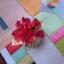 Hanbok hair pin ที่ปักผมฮันบก รุ่นดอกมูกุงฮวา สีแดง thumbnail 2