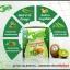 คายะ คลอโรฟิลล์ กรีนที ดีท็อกซ์ KAYA Chlorophyllin Green Tea thumbnail 5