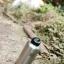 Kanteen® Wide brushed stainless 64oz thumbnail 6