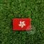 อาร์มปักธงฮ่องกง