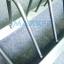 ขาย ที่เก็บแผ่นน้ำหนัก แบบมีล้อเลื่อน Bumper Plate Rack w/Wheels : Plate Storage Racks thumbnail 6