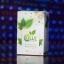 Colly Chlorophyll Plus Fiber คอลลี่ คลอโรฟิลล์ พลัส ไฟเบอร์ ร้านไฮยาดี้ทีเค thumbnail 1
