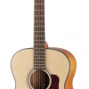 WALDEN GUITAR O550