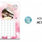 แฮร์คริสตัล 96 เม็ด - HC B 015