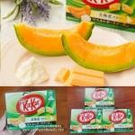 kitkat hokkaido melon คิทแคทเมล่อนฮอกไกโด