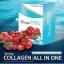 สปริงคอลลาเจน ออลอินวัน Spring Collagen All in One thumbnail 2