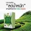 Green Tea Plus กรีนทีพลัส (อาหารเสริมลดน้ำหนัก) thumbnail 1