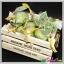 สบู่เลมอน(สีเขียว) สูตรต้นตำรับมาดามเฮง 120 g (ใหญ่) บรรจุลัง thumbnail 1