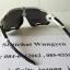 แว่นตา OAKLEY JAWBREAKER สีขาวดำ เลนส์เข้ม thumbnail 4
