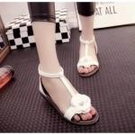 รองเท้าแตะ Sandal ดีไซน์สวย พื้นเตี้ย ที่กำลังเป็นที่นิยมอยู่ตอนนี้ ใส่ง่าย น่ารัก แต่งดอก camellia ใส่แล้วดูดี สีขาว ดำ
