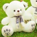 ตุ๊กตาหมีซีเค CK รุ่น BP050112 ขนาด 0.50 เมตร