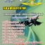 หนังสือ+VCD กองทัพอากาศ นายทหารกรรมวิธีข้อมูล ,นายทหารเทคโนโลยีสารสนเทศ thumbnail 1