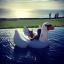 ห่วงยางเล่นน้ํา แพยางหงส์ ขาวสุดฮิต Giant Swan Inflatable งานเมกา thumbnail 3