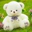 ตุ๊กตาหมีซีเค CK รุ่น BP050113 ขนาด 0.60 เมตร thumbnail 1