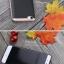 เคส Xiaomi Mi5 iPaky thumbnail 8