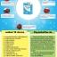 ไฟโตแซลมุ พลาเซนต้า Phyto Salmu Placenta sop250+ thumbnail 4