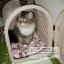 กระเป๋าหวายใส่สัตว์เลี้ยง ตะกร้าหวายใส่สุนัข-แมว thumbnail 4