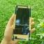ฝาหลัง Xiaomi Mi Note / Mi Note Pro ลายไม้ Bamboo thumbnail 4