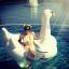 ห่วงยางเล่นน้ํา แพยางหงส์ ขาวสุดฮิต Giant Swan Inflatable งานเมกา thumbnail 2