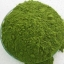 สมุนไพรมะรุม100% - พืชมหัศจรรย์ มีคุณค่าทางโภชนาการสูงสุด อุดมด้วยวิตามินและแร่ธาตุ ช่วยเสริมสร้างภูมิต้านทานและป้องกันโรค thumbnail 1