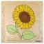 GROWTH PUZZLES SUNFLOWER - ภาพต่อ การเจริญเติบโตของดอกทานตะวัน thumbnail 1