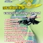 หนังสือสอบนายทหารวิเคราะห์ข้อมูล สารสนเทศ กองทัพอากาศ thumbnail 1