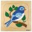 GROWTH PUZZLES BIRD - ภาพต่อ การเจริญเติบโตของนก thumbnail 1