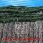 ถุงมือผ้าฝ้ายสีเทา 6 ขีด (600 กรัม) thumbnail 5