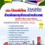 คู่มือสอบ แนวข้อสอบ ฝ่ายพัฒนาธุรกิจระหว่างประเทศ บริษัท ไปรษณีย์ไทย จำกัด thumbnail 1