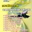 หนังสือ+VCD กองทัพอากาศ นายทหารโครงการและงบประมาณ thumbnail 1