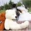 ตุ๊กตาหมีอ้วน ขนาด 2.5 เมตร thumbnail 1