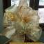 รับทำโบว์ติดกระเช้า,โบว์ติดของชำร่วย,โบว์ของขวัญ,โบว์รางวัล,โบว์ประกวด,โบว์ติดรางวัล thumbnail 72
