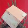การ์ดงานมงคลสมรสคู่-WEL91871