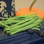 Mascotte Bean (ถั่วลันเตามาสครอส)