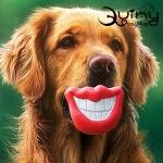 ของเล่นสุนัข Flaming Lips