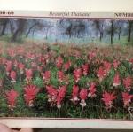 จิ๊กซอว์ 1200 Pcs. Jigsaw Happiness ภาพดอกไม้