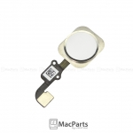 iPhone 6 and 6 Plus Home Button Assembly