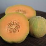 Minnesota Melon (เมล่อน มินนิโซตา)