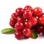 (แบ่งขายด 30 เม็ด) Ausway Cranberry 50000 mg. แครนเบอร์รี่สกัดเข้มข้น วิตามินสำหรับผู้หญิงโดยเฉพาะ thumbnail 2