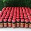 ( 2 ขวด) สาหร่ายแดงไบโอแอสติน แอสต้าแซนทิน (bioastin astaxanthin) จากอเมริกา ขวดละ 60 เม็ด thumbnail 1