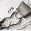 กระเป๋าหนังวัวแท้ Fendi Gray (21x17x12cm) thumbnail 2