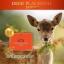 Wealthy Health Deer Placental 50,000 mg รกกวางที่สุดของอาหารเสริมต้านชรา เพิ่มพลัง ชะลอความแก่ บรรจุ 100 เม็ด thumbnail 3