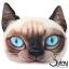 หมอนหน้าแมว วิเชียรมาศ