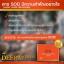 Wealthy Health Deer Placental 50,000 mg รกกวางที่สุดของอาหารเสริมต้านชรา เพิ่มพลัง ชะลอความแก่ บรรจุ 100 เม็ด thumbnail 4