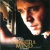 DVD A Beautiful Mind - อะบิวตี้ฟูลไมด์
