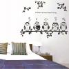 "Transparent Wall Sticker ""นกฮูก Owl"" ความสูง 75 cm ความกว้าง 90 cm"