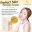 ชาลิต้า CHALiTA Perfect Skin Recovery Cream thumbnail 2