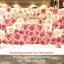ซุ้มดอกไม้กระดาษเต็มฉาก เช่าฉากถ่ายภาพงานแต่งงานโทนสีชมพู ยาว4เมตร (backdrop ฉากงานแต่ง) thumbnail 1