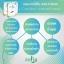 Zolin ผลิตภัณฑ์ลดน้ำหนัก+Detox 2IN1 thumbnail 4